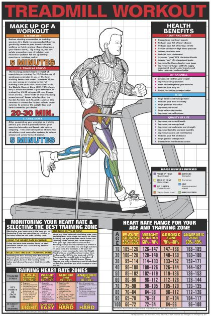 Treadmill Workout Poster - Laminated in Fitness Charts