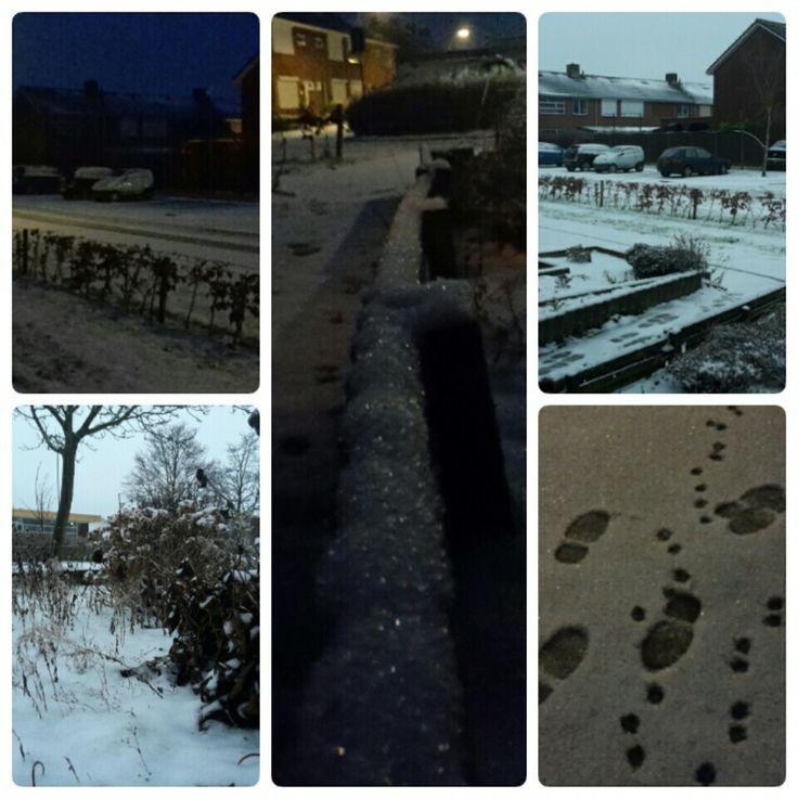 7 januari 2017 ... We hebben weer sneeuw!