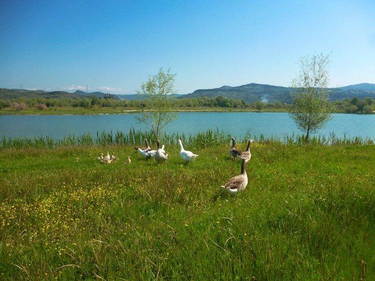 Το παραλίμνιο πάρκο Άρτας στο φράγμα του Αράχθου. Arachthos River in northwestern Greece.