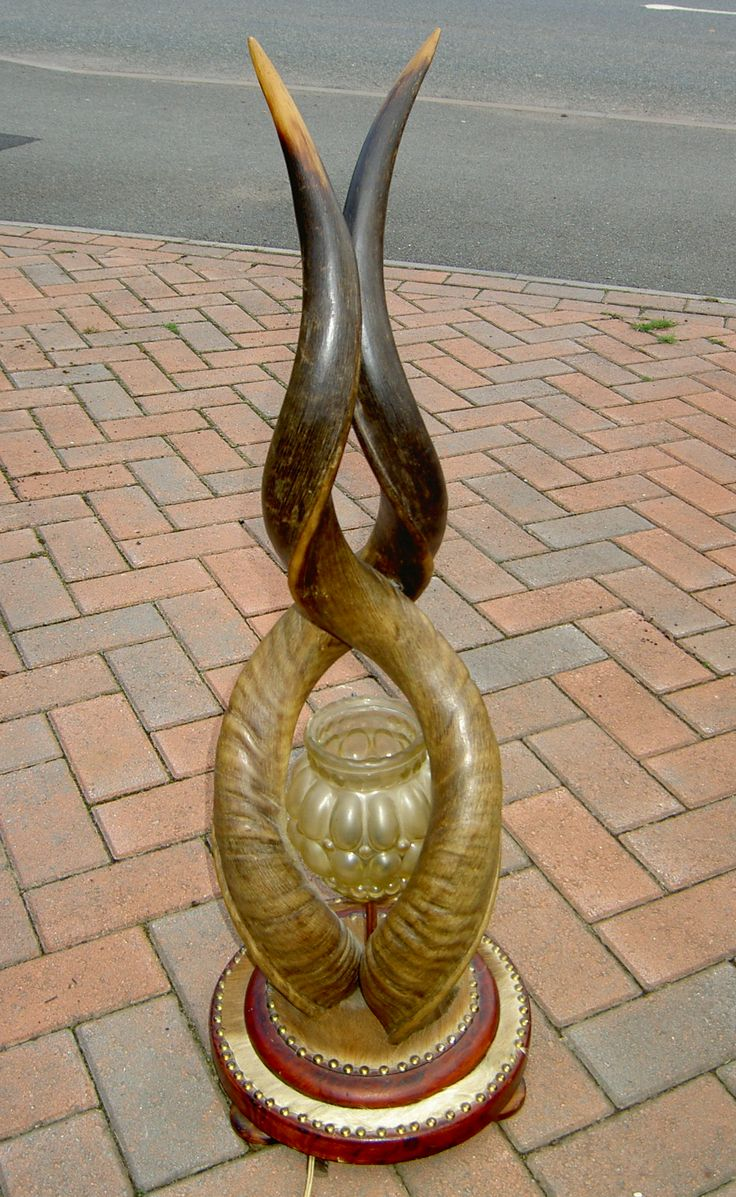 Kudu Horn lamp
