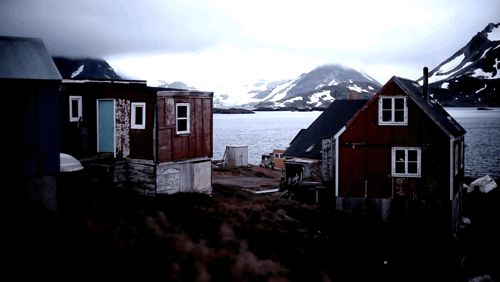 cinemagraph gif cinemagraph dogs travel fishing wolves iceland vimeo vimeo staff picks echograph