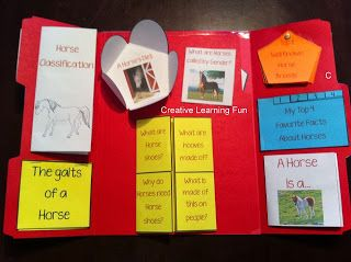 FREE All About Horses Lapbook