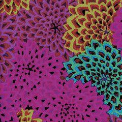 Dahlia Blooms - Figg