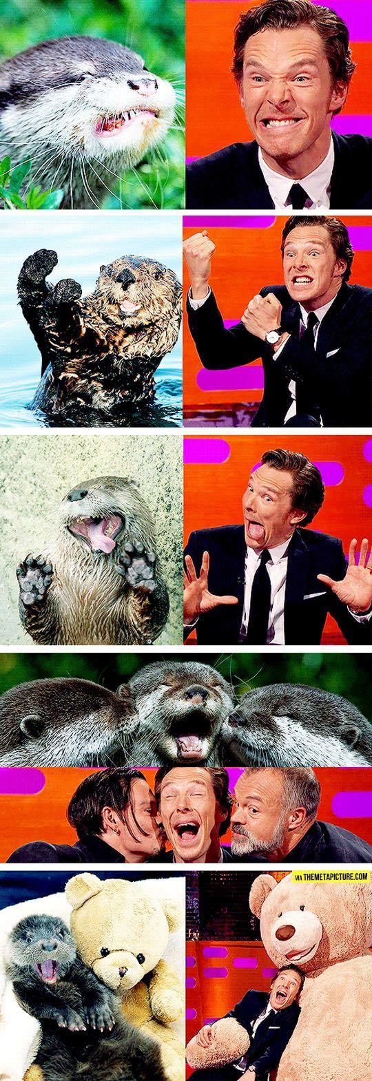 Benedict Cumberbatch Reenacts Otter Memes...omg I love it hahahaha