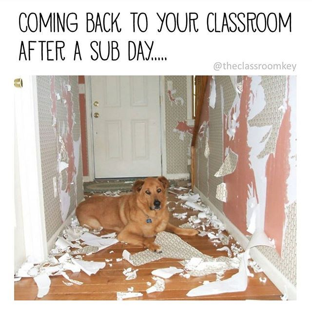 Ok, ok, not every sub leaves it like this. Teachers sure appreciate the subs that leave things clean. Follow on Instagram for more teacher humor #teacherproblems