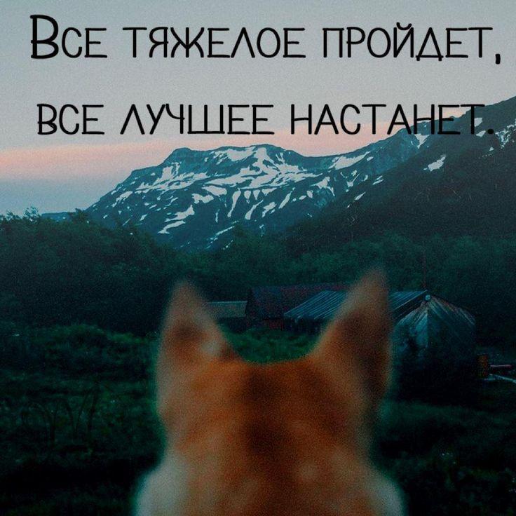 {{AutoHashTags}}