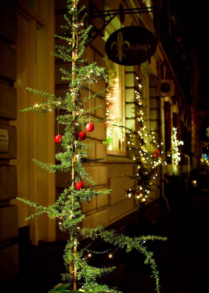 Charlie Brown Christmas Tree seen in Varde, Denmark