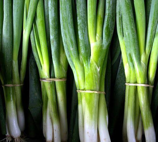 080809 - Reroot Organic - Elora Farmers Market 012.jpg