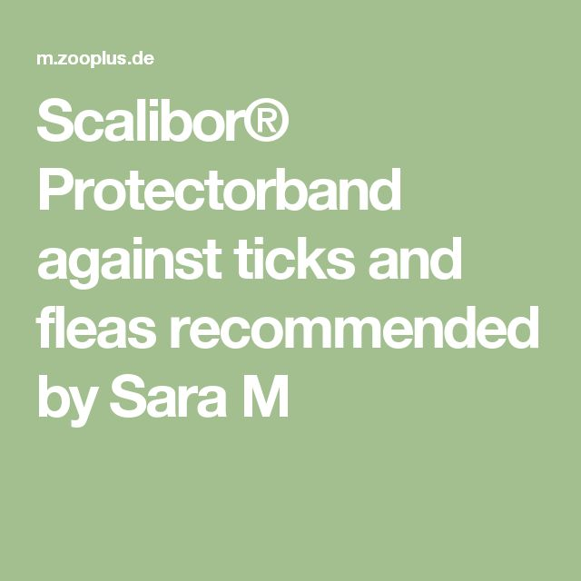 Scalibor® Protectorband against ticks and fleas recommended by Sara M