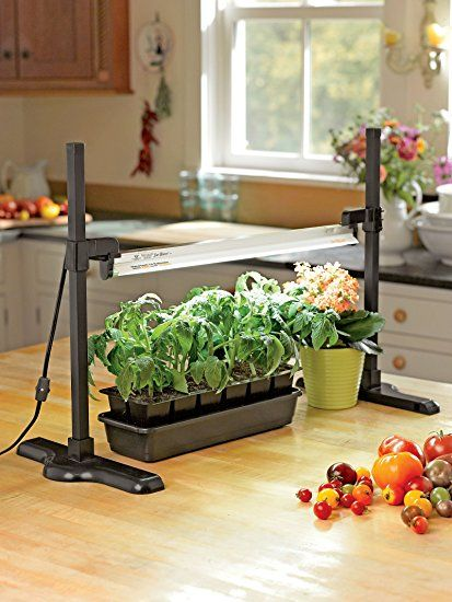 Amazon.com : Tabletop T5 Fluorescent Grow Light Stand Light Included :  Patio, Lawn