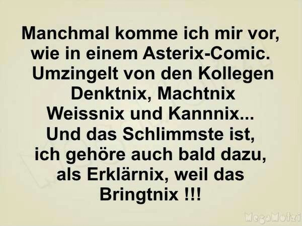 Manchmal komme ich mir vor, wie in einem Asterix-Comic. Umzingelt von den Kollegen Denktnix, Machtnix, Weissnix und Kannix... Und das Schlimmste ist, ich gehöre auch bald dazu, als Erklärnix, weil das Bringtnix!