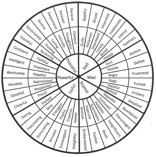Wheel For Expanding Emotional Vocabulary