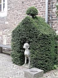 ineke greve  green dog house