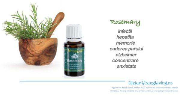 Ulei Esential de Rosemary / Rozmarin - Uleiuri Esentiale Young Living