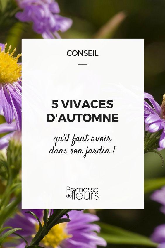 five vivaces à floraison tardive qu'il faut avoir dans son jardin