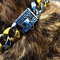 The Capone dog collar is truly unique with a stunning two tone gold and stainless steel finish. The yellow gold and white stainless steel style creates strong contrast with dog breeds with darker color fur. The Capone is made of high quality marine grade stainless steel with alternating links with a gold finish. The Capone dog collar has a large 1.25 inch width curb link design and is custom fitted to your dog's neck size.