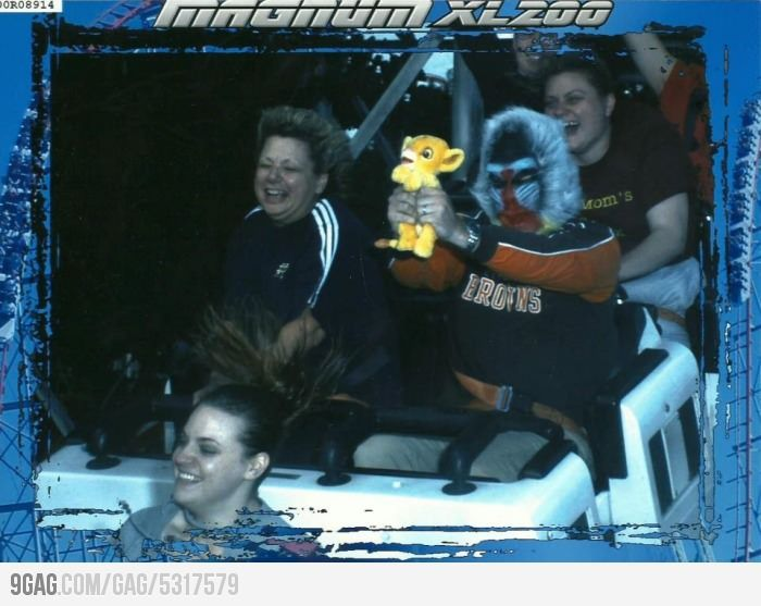 Meanwhile on the roller coaster: Picture, Rollers, Roller Coasters, Funny Stuff, Lion King, Disney, Photo
