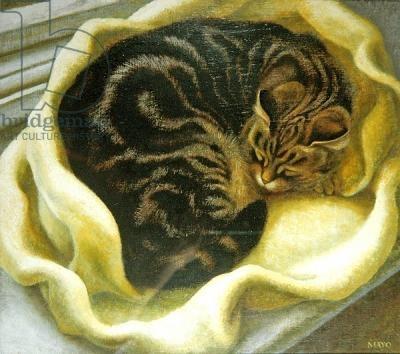Tabby Cat  | oil on board |  Eileen Mayo
