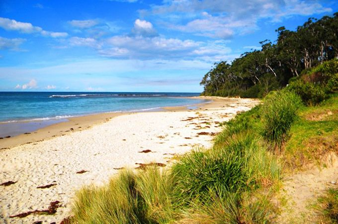 Quiet and tucked into a gorgeous bay of its own is Mollymook Beach, a popular weekend getaway spot on the South Coast.