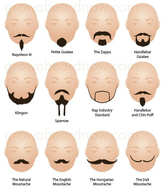 Differnt facial hair styles
