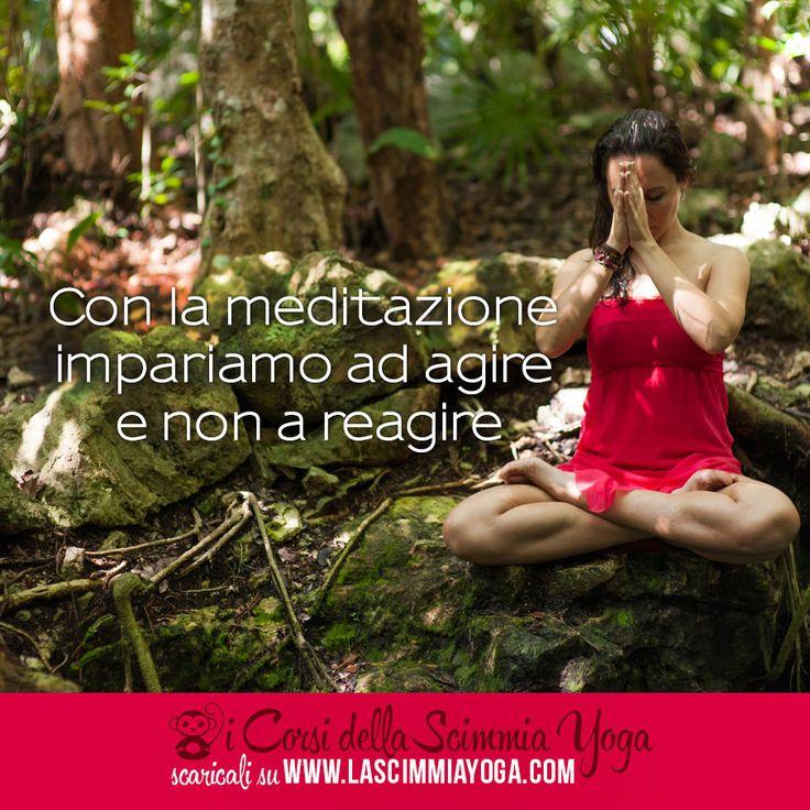 Questo corso di meditazione vuole essere un'introduzione alla meditazione. Ti guideremo nella pratica partendo dalle basi: la postura corretta, il respiro, l'atteggiamento , lo scopo della meditazione. http://www.lascimmiayoga.com/corso-di-meditazione/