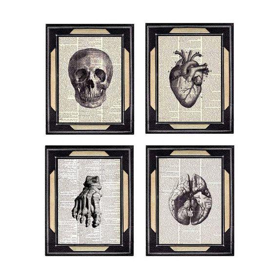 Ashley Dixon ANATOMICAL ART prints on upcycled vintage dictionary print anatomical skull brain heart foot, human anatomy, medical science, black white