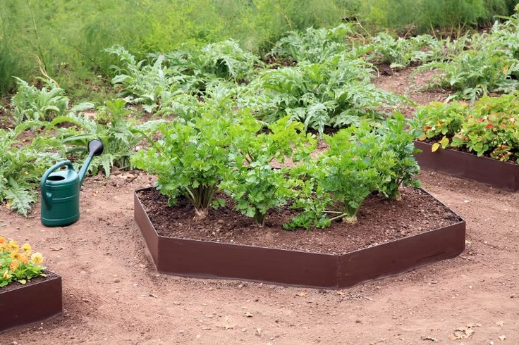 Each EverEdge EasBed panel is 1m long, 200mm high and 2mm thick. Extension kits can be easily attached to allow great flexibility in raised garden bed design.