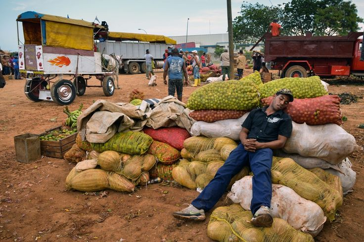 RESTING UP: Farmer Rigoberto Diaz napped as he waited for retailers to purchase items from him at a wholesale market in Havana Tuesday. (Adalberto Roque/Agence France-Presse/Getty Images)
