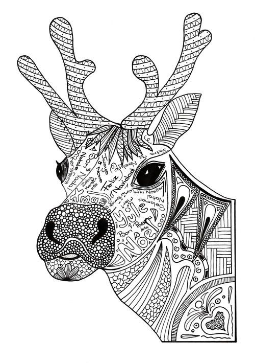 Christmas Reindeer Adult Coloring Page Animal Coloring