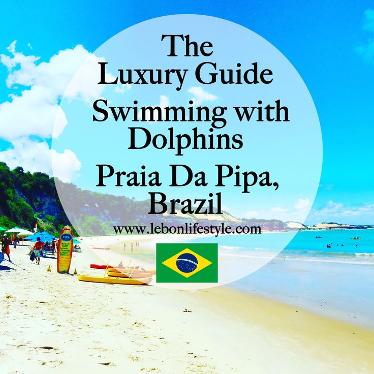 The complete luxury travel guide to swimming with dolphins in Praia Da Pipa, North East Brazil. Including where to stay, where to eat and what to do.