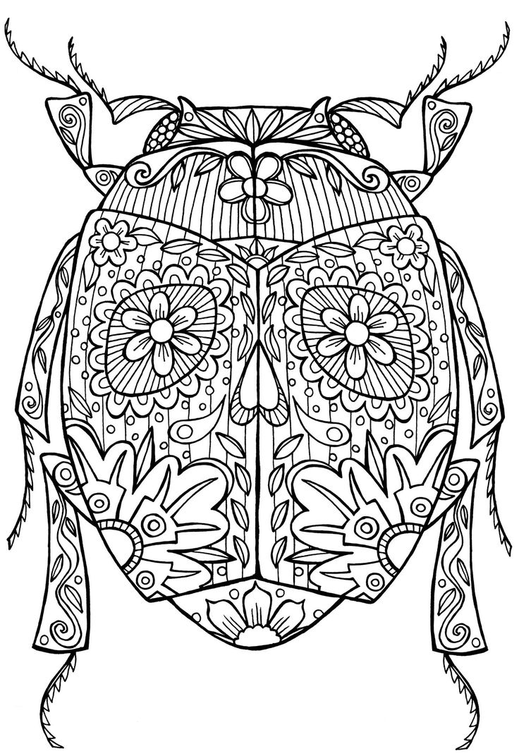 Coloring pages starfish intermediate - Beetle Bug Abstract Doodle Zentangle Coloring Pages Colouring Adult Detailed Advanced Printable Kleuren Voor Volwassenen Coloriage