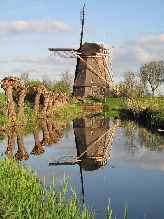 De Zwaan, Ouderkerk aan de Amstel, Foto: Piet Glasbergen (2-5-2015).