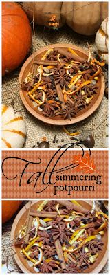Bring fall inside with Simmering Harvest Potpourri. Easy to make with things from your pantry