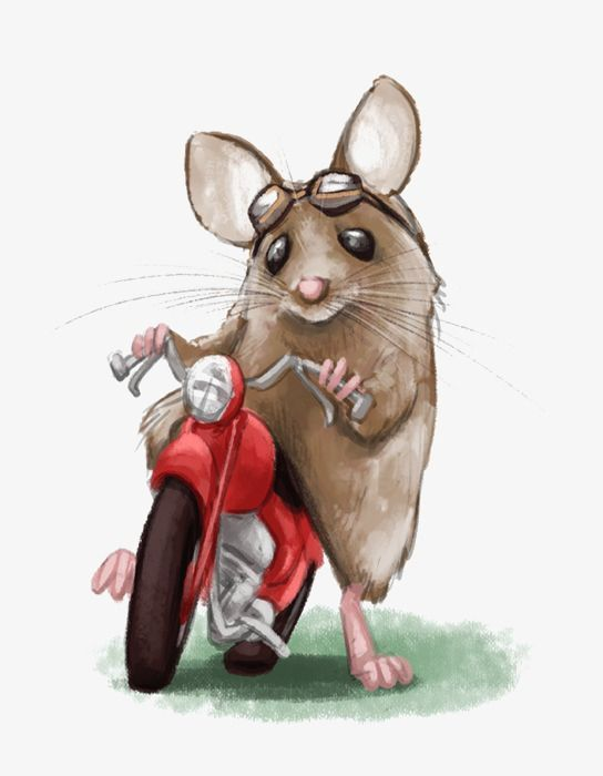 Рисунки мышей смешные