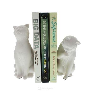 Kitap Desteği Kedi - 59 TL l #kitap #kedi