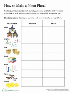 1000 ideas about plural words on pinterest singular and