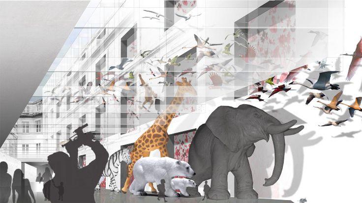 BORDEAUX // Museum d'Histoire Naturelle - Opus 5 Architectes