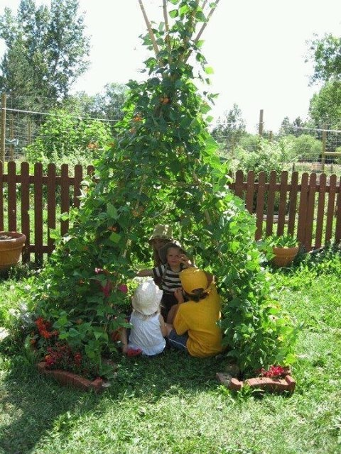 A nice old fashioned green bean teepee for an edible backyard play house. (Forget waiting for kids- I want one NOW!)