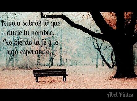 Frase Abel Pintos