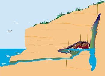 La Grotte Cosquer vue en coupe, Marseille. La grotte Cosquer est située dans les Calanques, près de Marseille, au cap Morgiou. Elle est accessible par un tunnel long de 175 mètres dont l'entrée est à 37 mètres de fond. Unique au monde, cette grotte sous-marine abrite plusieurs dizaines d'oeuvres peintes et gravées il y a environ 27 000 et 19 000 ans