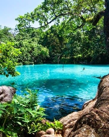 Luganville, Vanuatu | Journey through the tropical foliage along a crystal-clear river in a traditional wooden dug-out to one of the island's famous blue holes for a swim in the naturally blue pool of fresh water.