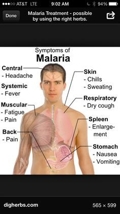 Those are all the symptoms of malaria. It is really bad and many people die!