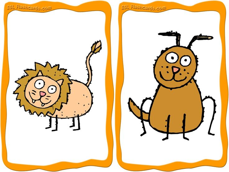 Sample Animal Flashcards