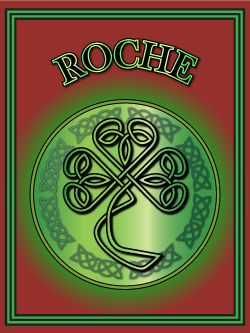 Roche – popular Irish name with Norman origins. Find out about the origins of 100s of Irish names at Ireland Calling.