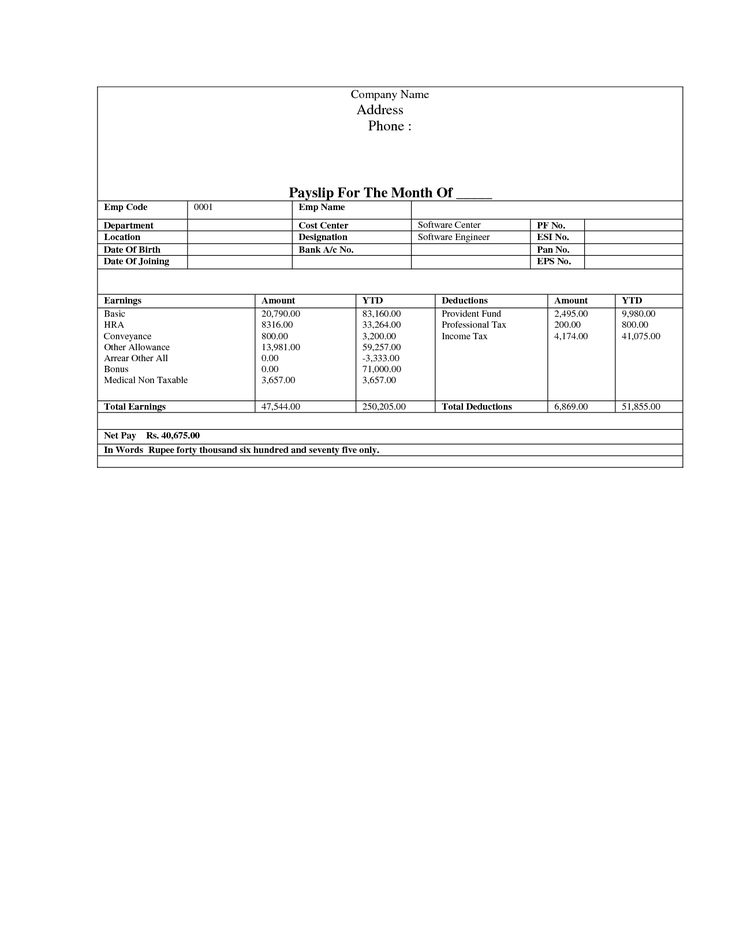 Pay Stub Template Document Sample business Templates, Words