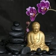 "‎""How does one practice mindfulness? Sit in meditation. Be aware of only your breath.""  -Buddha"