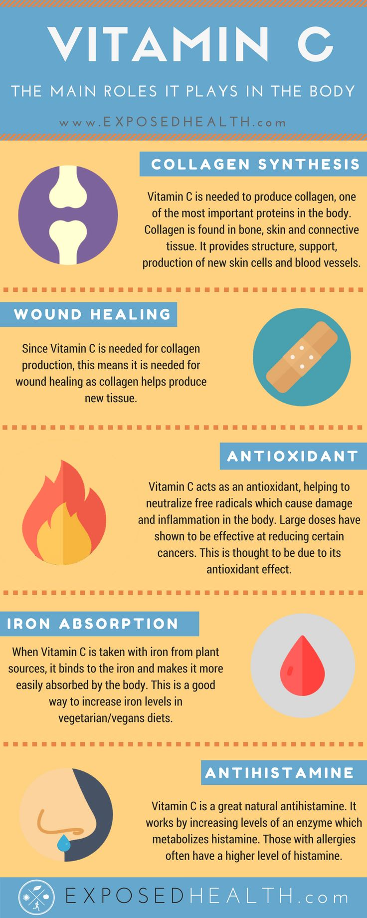 Health infographic - Vitamin C