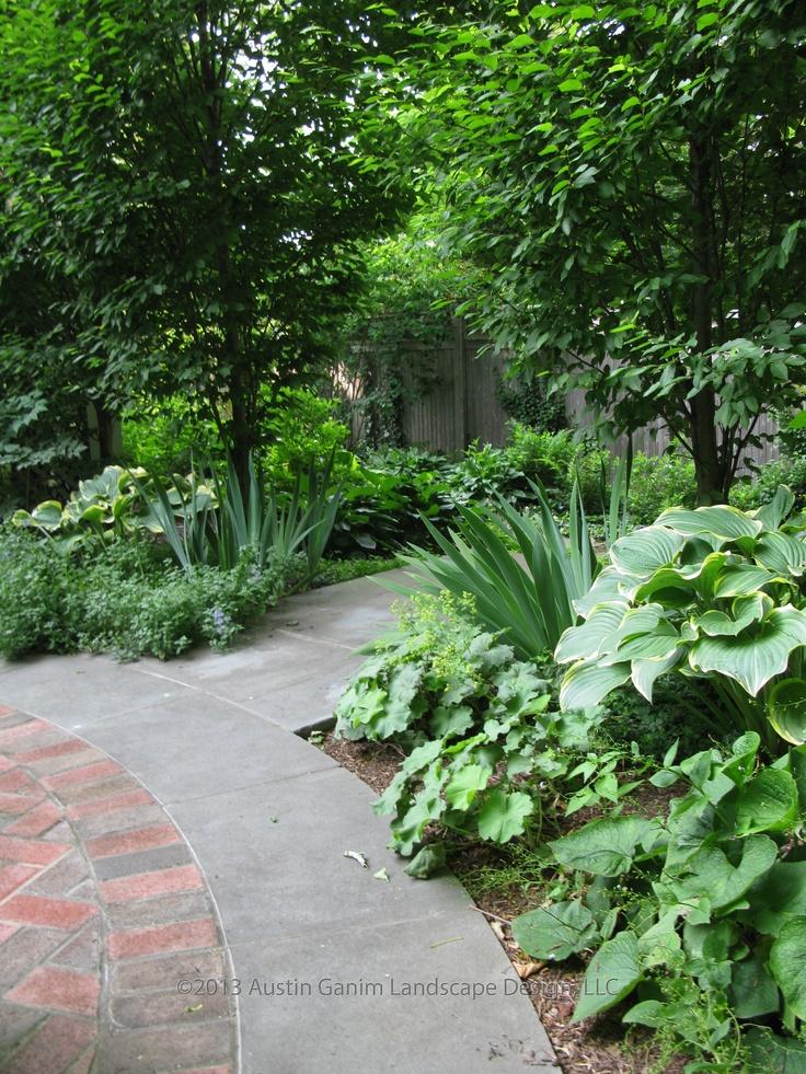 10 best plant combinations images on Pinterest | Urban landscape ...