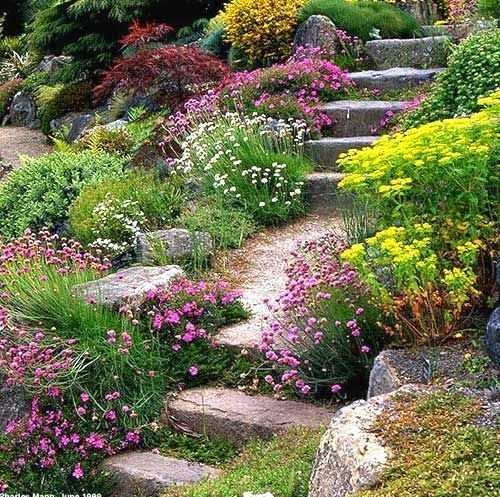 30 Small Backyard Landscaping Ideas On A Budget: 901 Best Landscaping A Slope Images On Pinterest
