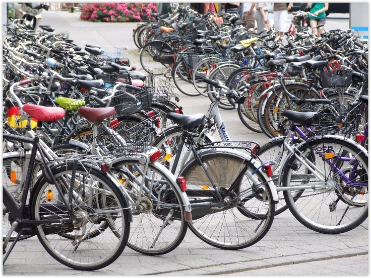 "MUENSTER (GERMANY): Muenster is also called ""bicycle capital"" because here the bicycle  is the most commonly used means of transport and there are twice as many bicycles as residents."